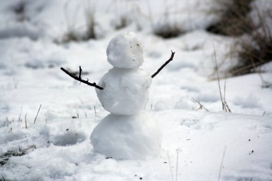 A little snowman with stick arms