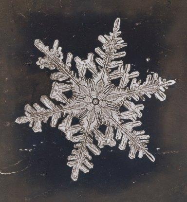 A single snowflake